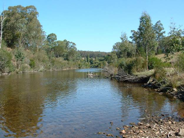 Tambo River at Ramrod Creek